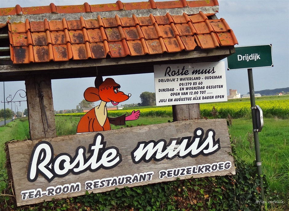 Roste muis